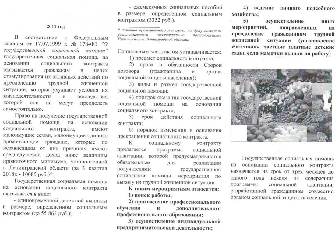 цсзн._1